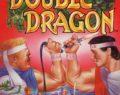 Double Dragon: NES